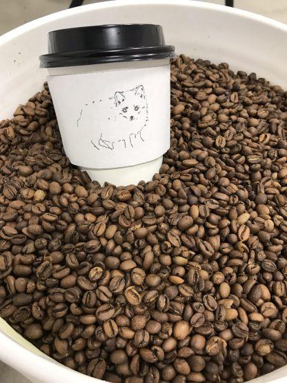 coffee roasting class buffalo ny
